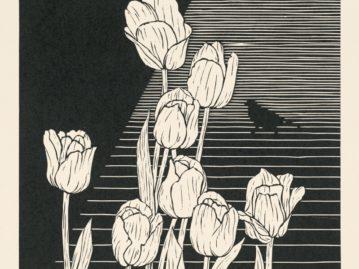 Veľkonočná pohľadnica: Kvety a línie